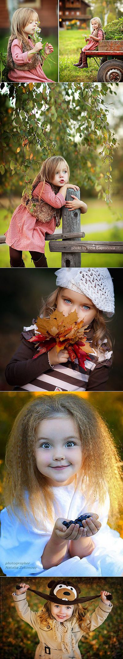 Dobroutreny... Autumn suns | Cool pictures