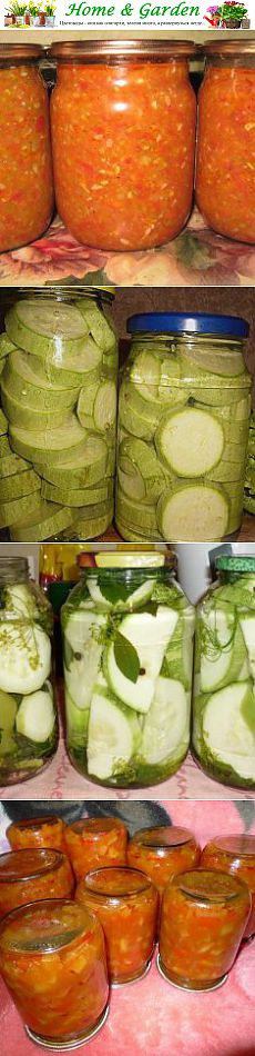 on 10 preparations of Vegetable marrows, Cucumbers, Tomatoes, Eggplants